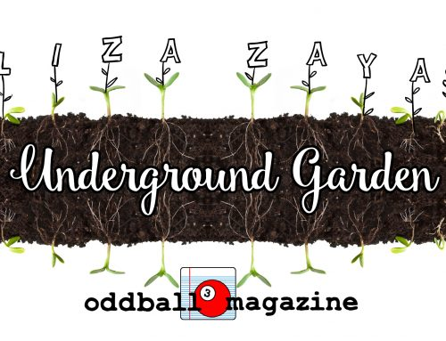 The Underground Garden: I Didn't Love You, I Was Stupid